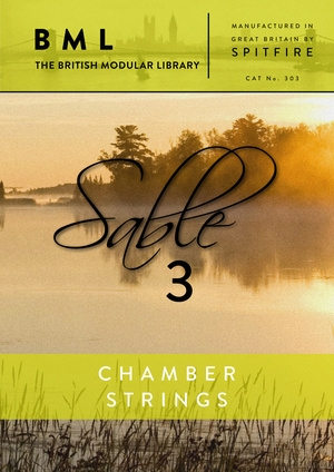Spitfire Audio BML Chamber Strings Sable 3